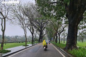Huế mở nhiều tuyến phố đi bộ trong năm 2021