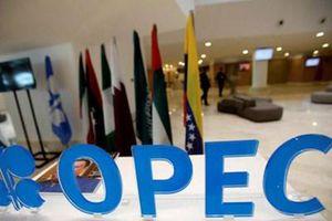 OPEC+ cho phép Nga và Kazakhstan tăng sản lượng dầu mỏ