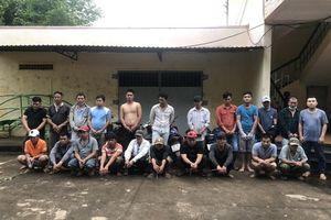 Triệt phá trường gà trong vườn điều ở Long Khánh: Bắt giữ 22 con bạc