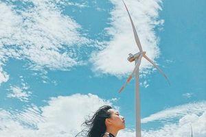 Chụp ảnh 'chất như nước cất' tại hai cánh đồng quạt gió ở Bình Thuận