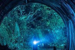 5 đường hầm ma ám nổi tiếng trên thế giới