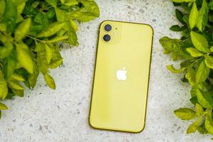 iPhone 11 giảm giá không phanh tại Việt Nam