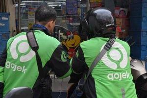 Kỳ lân xe ôm Gojek tính chuyện sáp nhập với công ty đồng hương