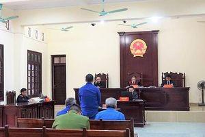 Hải Phòng: Phù phép đất nông nghiệp thành đất ở, chủ tịch phường cùng 2 đồng phạm lĩnh án