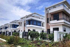 Đầu tư LDG đã ngừng triển khai Dự án Khu dân cư Tân Thịnh