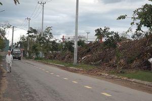 Bãi rác cây xanh gây ô nhiễm giữa khu dân cư