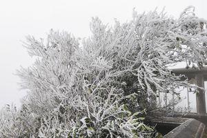 Hầu hết học sinh Lạng Sơn nghỉ học khi thời tiết xuống 4 độ C