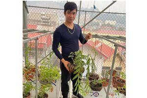 Lan đột biến có giá tiền tỷ, chủ vườn lan Phạm Ngọc Cảnh nói gì?