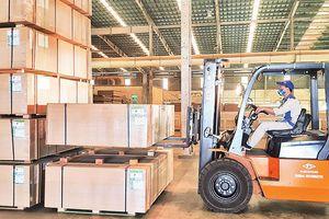 Quảng Trị đẩy mạnh chế biến gỗ xuất khẩu