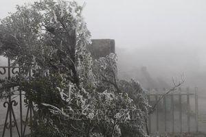 Nhiệt độ tại đỉnh Mẫu Sơn xuống -1,6 độ C, băng tuyết xuất hiện