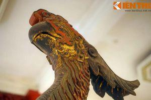 Giải mã hình tượng 'vợ chồng' vẹt khổng lồ 500 tuổi ở Hà Nội