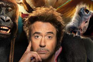 Những bộ phim gây thất vọng trong năm 2020