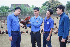 Một cán bộ đoàn phát triển kinh tế trang trại