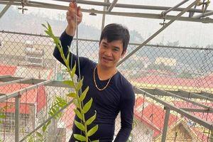 Chủ vườn lan Phạm Ngọc Cảnh: Mỗi chậu lan là một tác phẩm nghệ thuật
