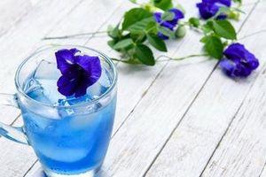 Không chỉ đẹp lung linh, loài hoa này còn có nhiều tác dụng diệu kỳ đối với sức khỏe