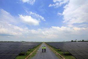 Xu hướng phát triển năng lượng tái tạo