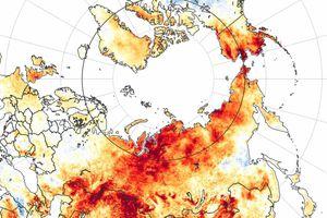 Năm 2020 là năm nóng nhất từng được ghi nhận