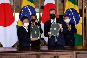 Brazil và Nhật Bản thỏa thuận hợp tác khai thác kim loại hiếm
