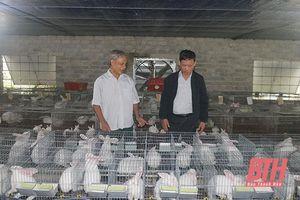 Ông Lê Hữu Châu - gương sáng người cao tuổi làm kinh tế giỏi