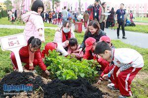 Thành phố Giáo dục Quốc tế- IEC Quảng Ngãi hưởng ứng hoạt động 'Tết trồng cây'