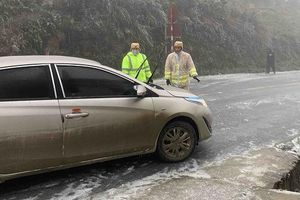 Băng giá gây thiệt hại các tỉnh miền núi phía Bắc