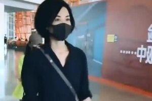 Phản ứng của Vương Phi khi chạm mặt Trương Bá Chi ở sân bay