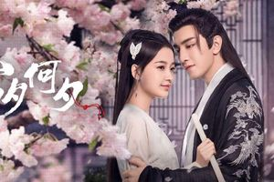 Top 10 phim ngôn tình 'sủng ngọt' Hoa Ngữ 'hot' nhất hiện nay
