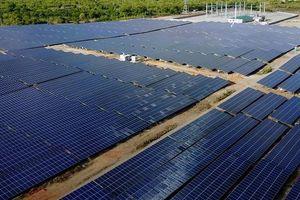 Tiền to tiếp tục đổ về BB Group cho tham vọng năng lượng tái tạo