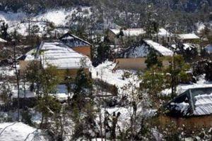 Cận cảnh tuyết rơi hiếm gặp ở Lào Cai
