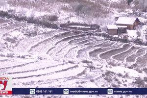 Tuyết rơi dày đặc tại xã vùng cao Y Tý