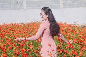 Kỳ 4: Lãng mạn giữa vườn hoa thạch thảo