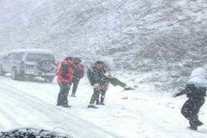 Ngắm tuyết rơi như châu Âu từ cáp treo lên đỉnh Fansipan