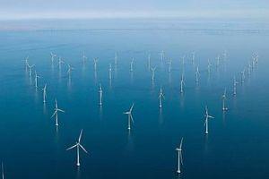 FECON nghiên cứu đầu tư nhà máy điện gió trên biển công suất 500 MW ngoài khơi Bà Rịa - Vũng Tàu