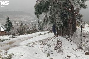 Băng tuyết phủ dày đặc, Sapa thiệt hại hơn 1,4 tỷ đồng
