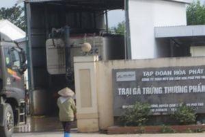 Công ty Gia cầm Hòa Phát Phú Thọ gây ô nhiễm