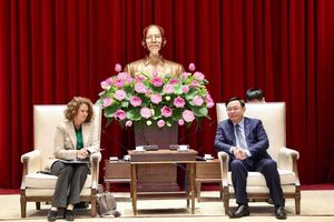 Ngân hàng Thế giới đề nghị hỗ trợ Hà Nội phát triển đường sắt đô thị