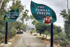Thành phố Quy Nhơn nói gì về khu du lịch không phép vẫn vô tư hoạt động?