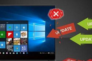 Thủ thuật tự khắc phục lỗi laptop Windows Update bị treo không cần gọi thợ