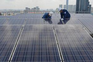 Dư thừa điện mặt trời: Sẽ cắt giảm khoảng 1,3 tỷ KWh trong năm 2021