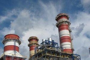 Tổng công ty Điện lực Dầu khí Việt Nam thoái vốn
