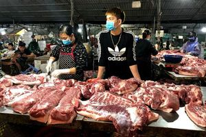 Giá thịt lợn hơi tiếp tục tăng nhẹ trên cả nước