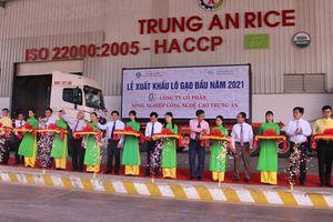 Lô gạo xuất khẩu đầu năm 2021 đạt 1,6 nghìn tấn