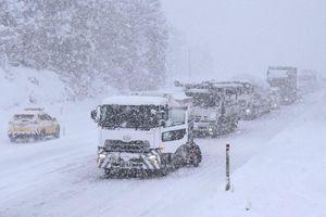 Nhiều nơi ở Nhật Bản tê liệt vì bão tuyết