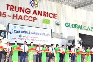 Lô gạo thơm 1.600 tấn đầu tiên năm 2021 lên đường đi xuất khẩu