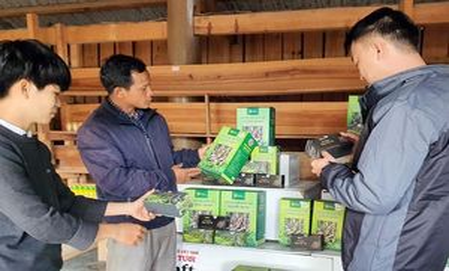 Kon Tum xây dựng thương hiệu mỗi xã một sản phẩm