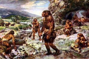 Nguồn gốc câu cửa miệng 'ăn lông ở lỗ' có từ đâu?