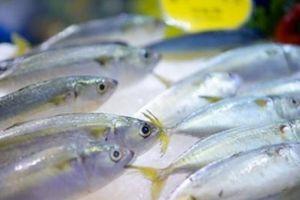 Cảnh báo: Doanh nghiệp Việt bị công ty nước ngoài lừa đảo đặt cọc hàng nhập khẩu
