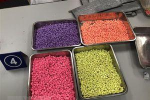 Hải quan TP.HCM thu hơn 31kg ma túy gửi qua đường chuyển phát nhanh