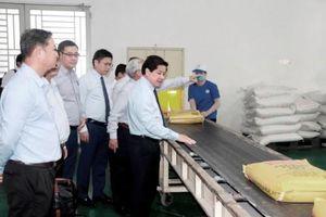 Việt Nam xuất khẩu lô gạo đầu năm 2021 với 1.600 tấn sang Singapore và Malaysia