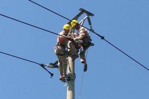 PC Bắc Kạn: Đảm bảo cung cấp điện ổn định trong dịp Tết Nguyên đán Tân Sửu và năm 2021